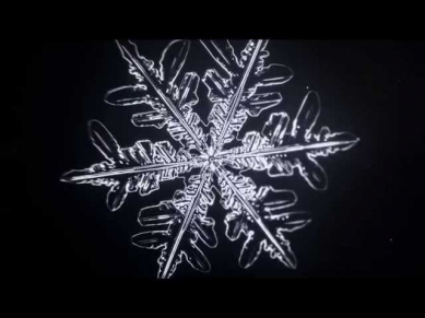 Microscopic Time-Lapse of Growing Snowflake - Vyacheslav Ivanov (2014)